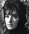 Download all the movies with a Suzanne Pleshette